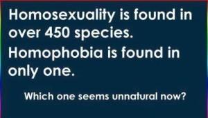 homophobia - species