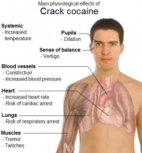 Image result for smoking crack Damage Blood Vessel